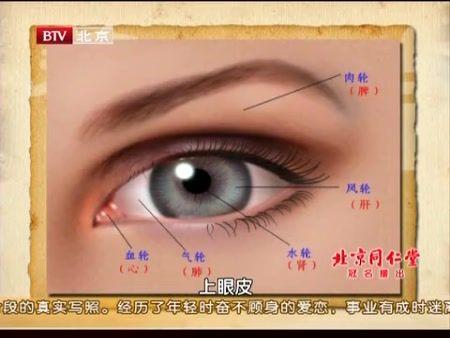 眼睛结构图正面带名称