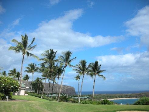 夏威夷-可爱岛,你好岛,拉奈岛,摩洛凯岛-景点攻略