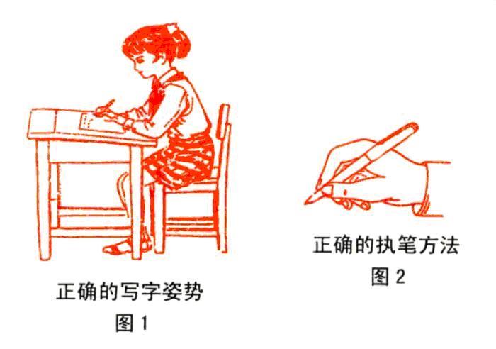 国家规定汉字笔顺规则大全 笔顺演示动画 易错字大集合