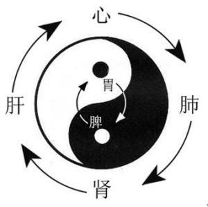 """""""寻回中医失落的元神""""系列之四认识气机圆转升降法时图片"""