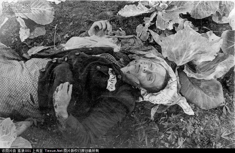 1944年纳粹集体屠杀克鲁格集中营囚犯