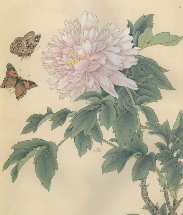 工笔画蝴蝶绘制步骤