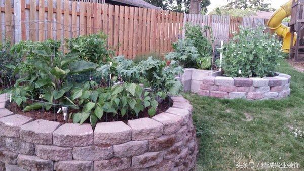 不同的作物,营养均衡 花园的设计非常简单,这样的能种菜,能种花.图片