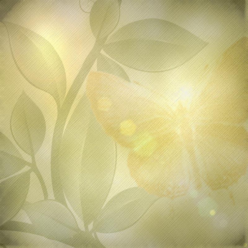 04:12           一组清新唯美背景素材    【背景图片】古风唯美背景