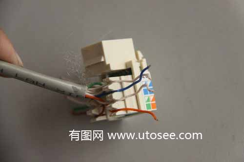 网线插座接法_有图